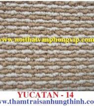 Carpet hung thinh – cung cấp thảm trải sàn