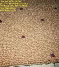 Thảm cũ qua sử dụng giá rẻ