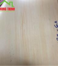 Sàn Nhựa giả gỗ, tấm simili lót phòng tập thể hình