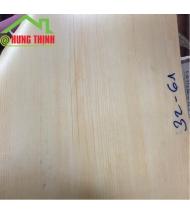 Sàn Nhựa giả gỗ, tấm simili lót phòng tập thể hình>